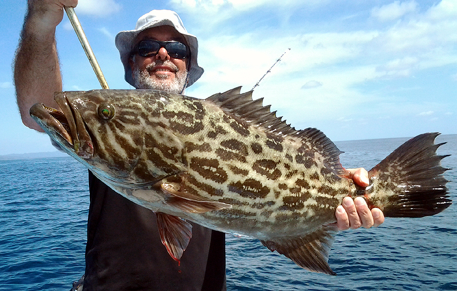 costa rica grouper